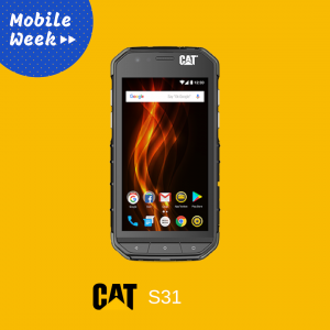 cat-s31-cyprus-ppissis